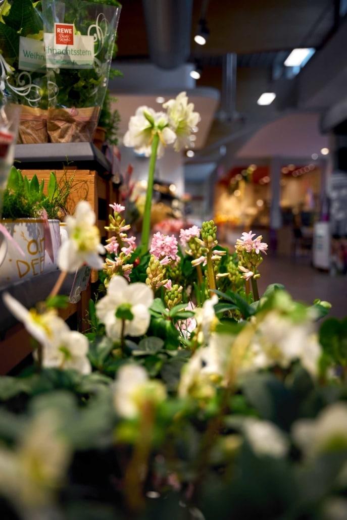Blumen im Supermarkt in Berlin